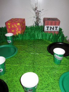 Minecraft Party Grass Tablecloth & Grass Decoration